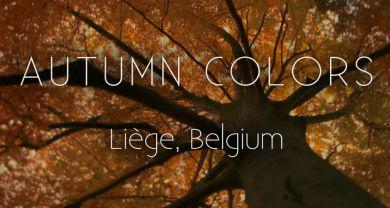 DK Production : Caméraman, réalisateur, monteur à Liège, Belgique: Documentaire: AUTUMN COLORS - Liège, Belgium